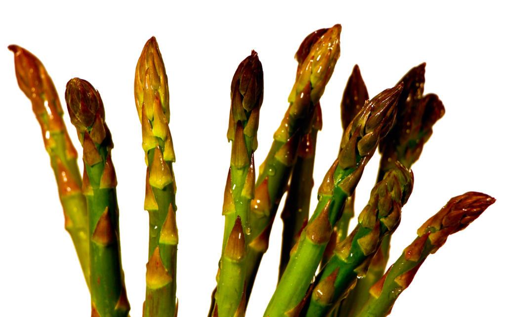 Green Asparagus Espárrago Fino
